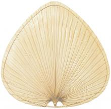"Fanimation CAISP2 - 18"" CARUSO BLADE: WIDE OVAL PALM, NATURAL  -  SET OF 1"